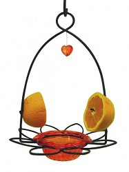 Oriole Flower Feeder