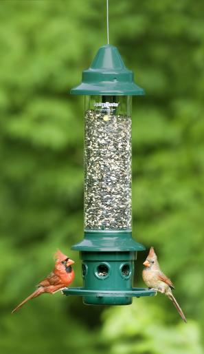Buster Plus Feeder,Brome,BBC1024