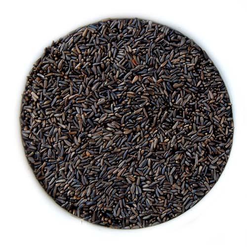 Nyjer Seed - 10#