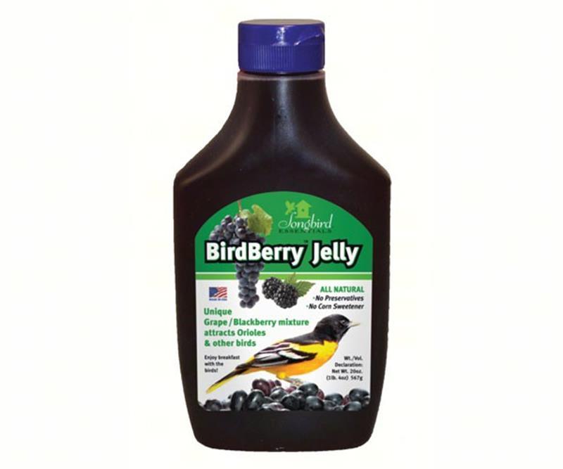 Birdberry Jelly for Orioles,SE6010