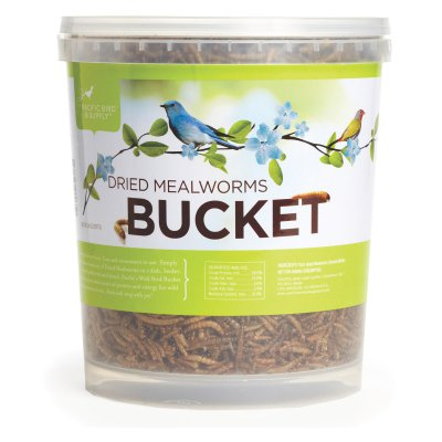 Bucket: Dried Mealworms,Pacific Bird and Supply,MWMWPBBUCKET