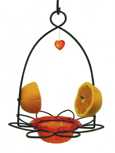 Oriole Flower Feeder,OFF