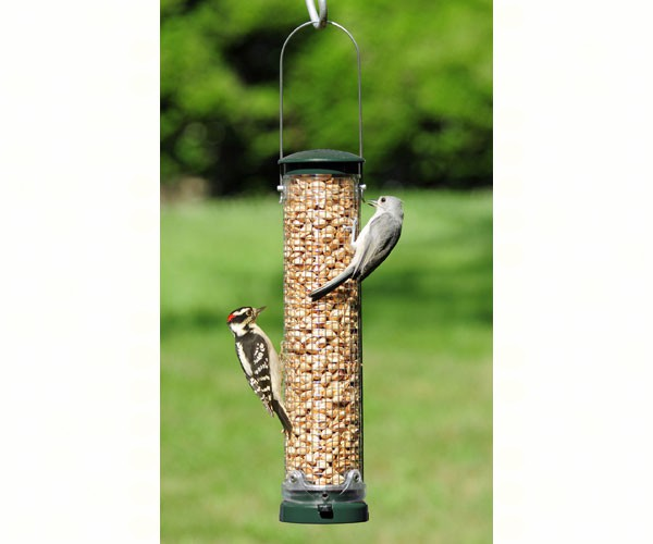 Quick Clean Peanut Feeder Spruce,Aspects,ASPECTS440